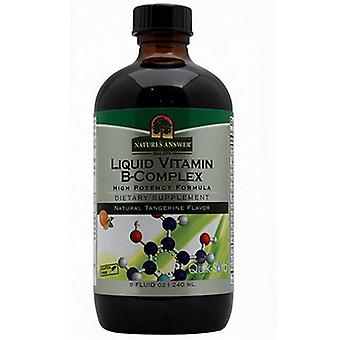 Nature's Answer Liquid Vitamin B Complex, Natural Tangerine, 8 oz