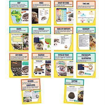 Mini carteles: Texto de no fijación Características conjunto de póster, Grado 1-6, 14 piezas