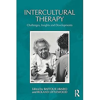 Intercultural Therapy: Challenges, Insights and Developments