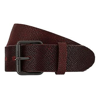 Strellson belts men's belts leather belt Bordeaux 7538