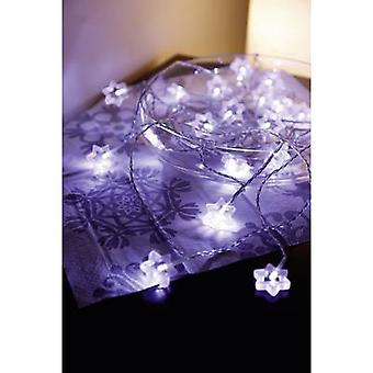 Polarlite LDC-02-004 Holiday lights (motif) Stars Inside mains-powered No. of bulbs 20 LED (monochrome) Cold white Illuminated length: 5.7 m