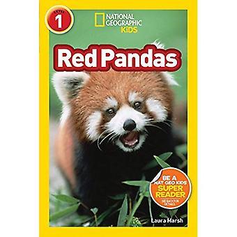 Röda pandor (nationella geografiska läsare: nivå 1)