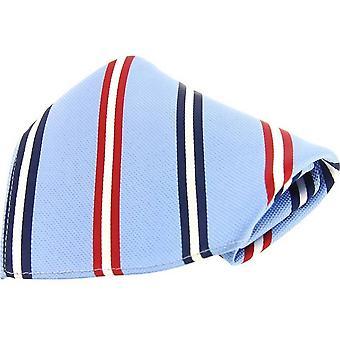 David Van Hagen Striped Silk Pocket Square - Blue/Navy/Red