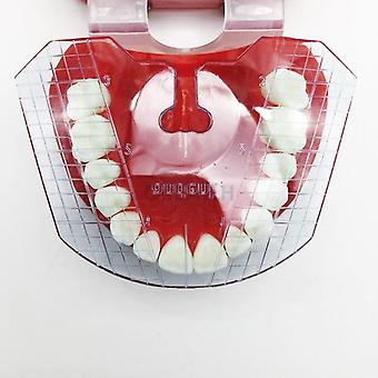 Dental Lab Dental Guide Plate Teeth Arrangement On Denture Work