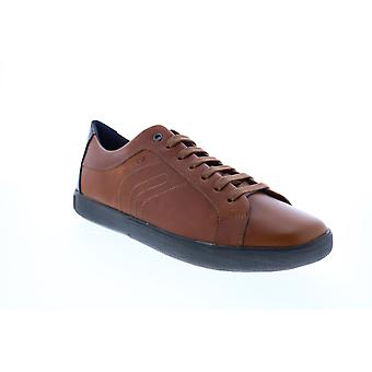 Geox U Jharrod A Mens Brown Leather Lace Up Euro Sneakers Chaussures