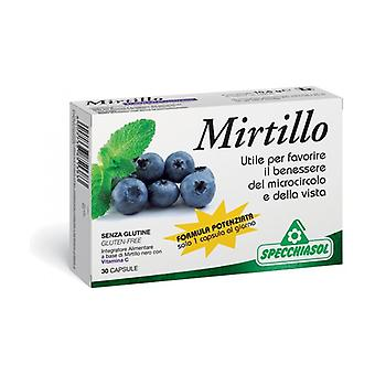 Enhanced Blueberry Formula 30 capsules
