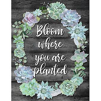 Simply Stylish Bloom Where You Are Planted Chart