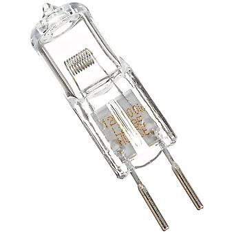 Pentair 79131200 12V 100W лампы