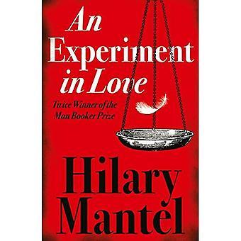 Ett Experiment i kärlek