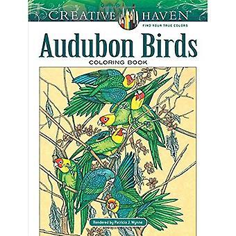 Kreativa oas Audubon fåglar målarbok