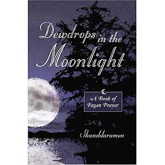 Dewdrops in the Moonlight A Book of Pagan Prayer by Shanddaramon