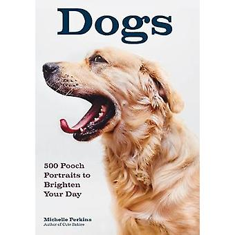 Dogs - 500 Pooch Portraits to Brighten Your Day by Michelle Perkins -