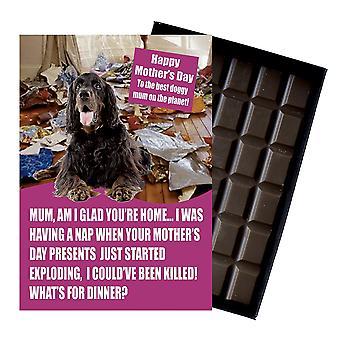 Gordon Setter Owner Dog Lover  Mother's Day Gift Chocolate Present For Mum UK
