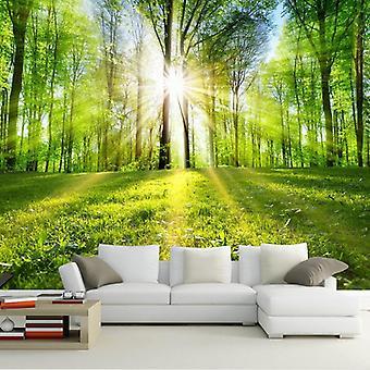 3d 森林阳光自然景观墙壁画客厅/电视沙发卧室首页