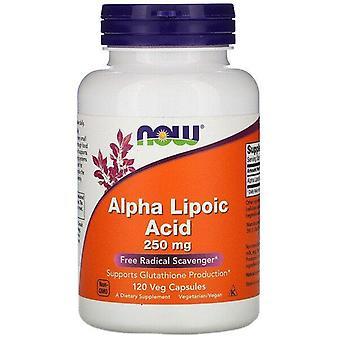 Maintenant aliments, acide alpha lipoïque, 250 mg, 120 capsules de légumes