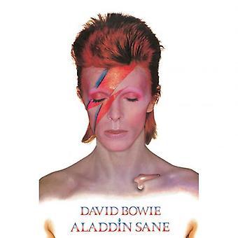 David Bowie Juliste Aladdin Slane 269