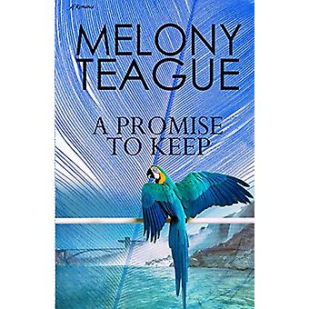 A Promise to Keep by Melony Teague - 9781947327726 Book
