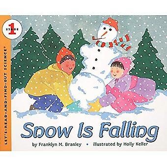 La neve è caduta (Let's leggere e scoprire la scienza)