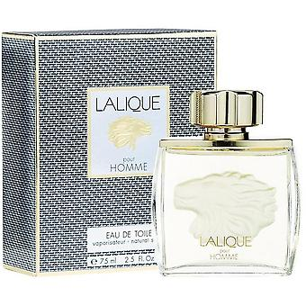 Lalique for Men ' s Lion água WC
