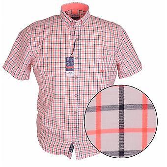DARIO BELTRAN Dario Beltran Two Tone Graph Check Short Sleeve Shirt