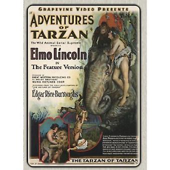 Aventures de Tarzan fonctionnalité Version 1928 [DVD] USA import