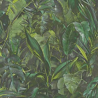 Erismann Jungle Palm