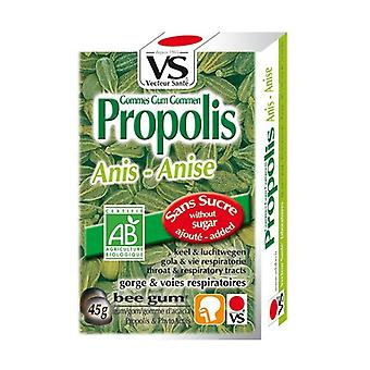 Organic Propolis Anise Erasers without sugar 45 g (Anise)