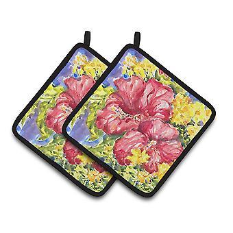 Carolines Treasures  6056PTHD Flower - Hibiscus Pair of Pot Holders