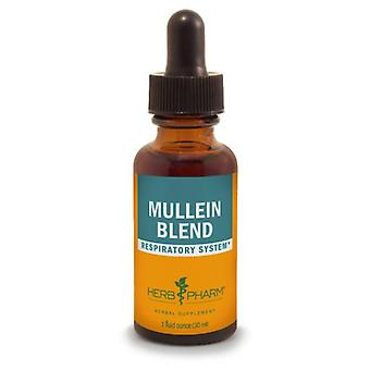 Herb Pharm Herb Pharm Mullein Blend Extract 1 oz