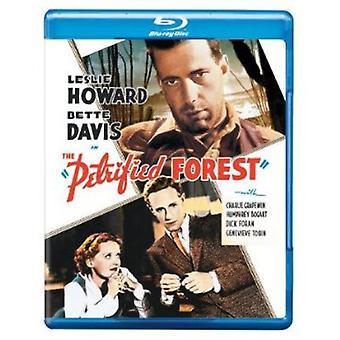La forêt pétrifiée [Blu-ray] [BLU-RAY] importation USA