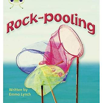 Phonics bugg: Rock-poolning fas 3 (N-F)