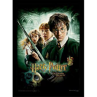 Câmara Secreta de Harry Potter Emoldurada Placa 30 *40cm