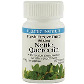 Eclectic Institute Inc Nettles Quercetin, 90 Korkkia