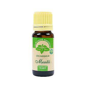 Piparminttu eteerinen öljy (Mentha piperita) 100% puhdasta ilman 10 ml: n lisäystä