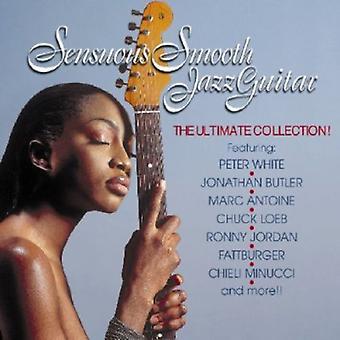 Zinnelijke Smooth Jazz Guitar - Sensuous Smooth Jazz Guitar [CD] USA importeren