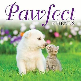 Pawfect Friends by Jack Russell - 9781782745860 Book