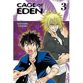 Kooi van Eden 3