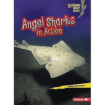 Angel Sharks i aktion (Lightning Bolt böcker Shark World)