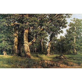 Eik van het bos, Ivan Shishkin, 60x40cm