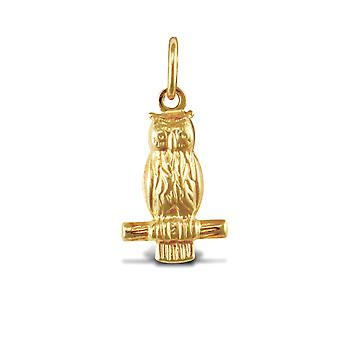 Jewelco London Damen 9ct Gelbgold Weise Eule Charme Anhänger