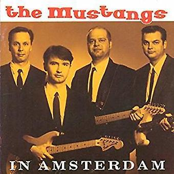 Mustangs - In Amsterdam [CD] USA import