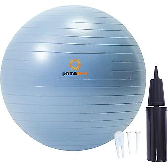 Gerui 【Amazon.com Limited Brand】 Exercise Ball (55cm Pale Gray) for Stability, Balance, Fitness With