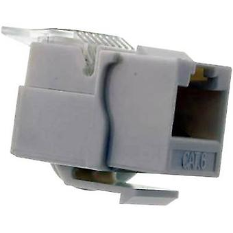 RJ socket, without the need for tools Socket, straight Number of pins: 8P8C White Telecom Security UKB/45U6 1 pc(s)