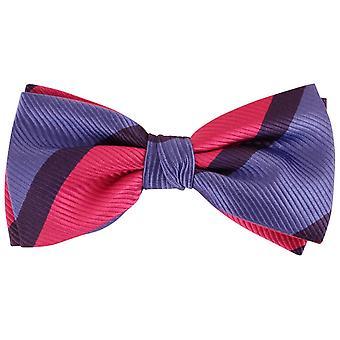 Knightsbridge dassen Diagonal gestreepte zijden strikje - blauw/roze