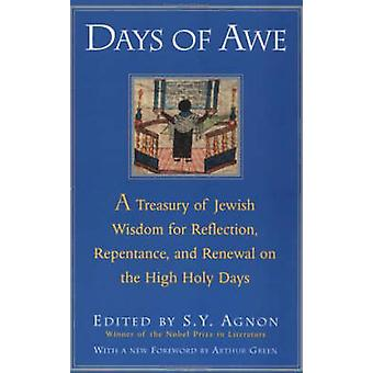Days of Awe (New edition) by S. Y. Agnon - 9780805210484 Book