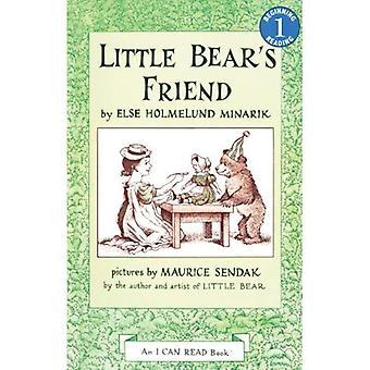 Ami de petit ours