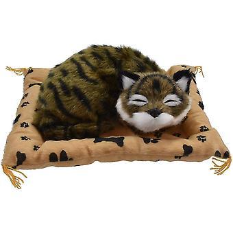Gato grande en la manta con el sonido