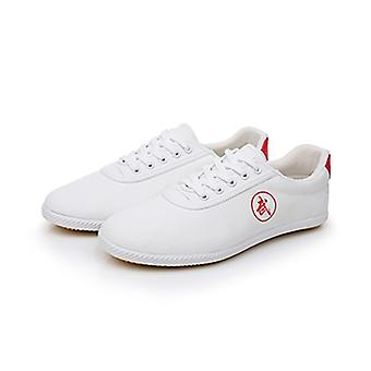 Summer Men Martial Arts Shoes, Chinese Style, Wushu Kung Fu Sportswear Old