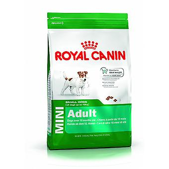 Mini Adult Dog Food Small Breed Adult (10 Months - 8 Years)