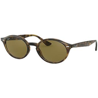 Ray-Ban RB4315 Brown scale B-15